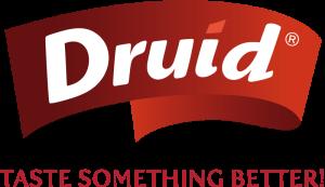druid_logotyp_slogan_pod_logem_ENG
